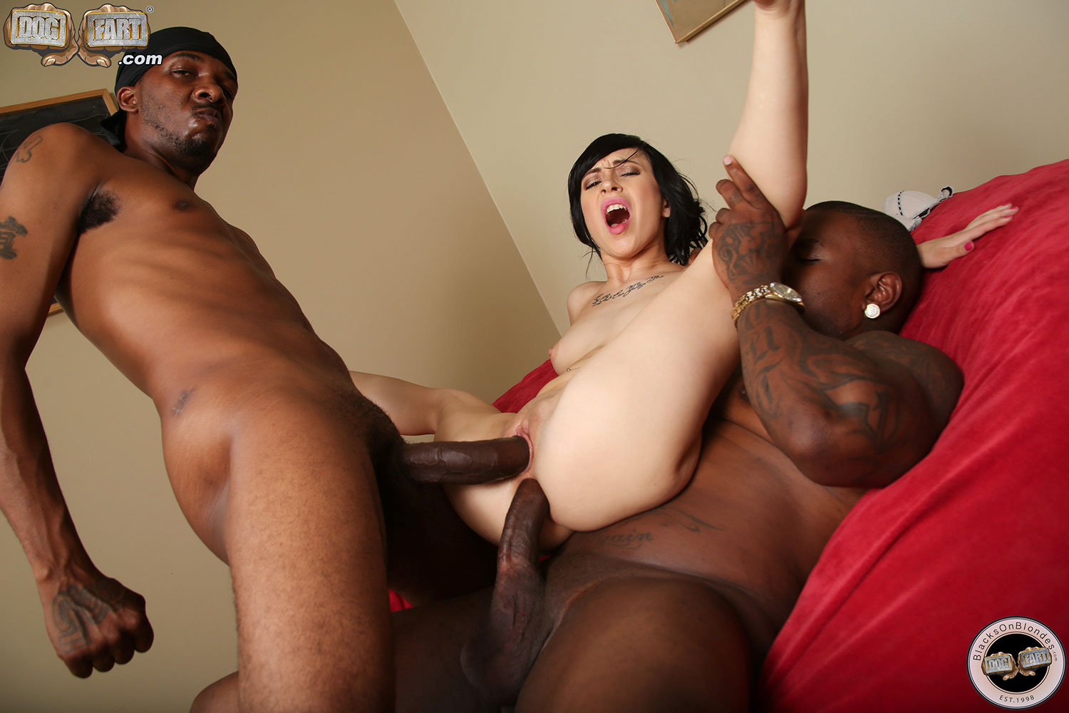 Bbc anal with mandingo makes raven hart squirt
